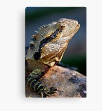 Spikes & Scales Canvas Print