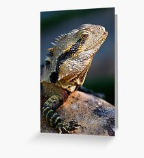 Spikes & Scales Greeting Card