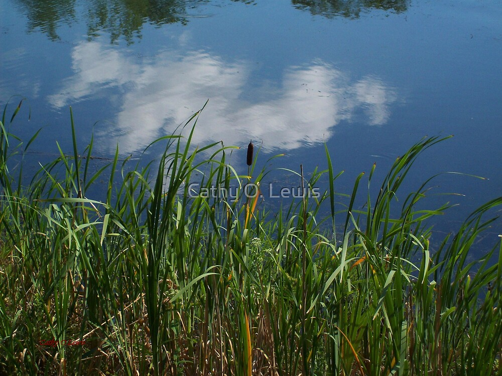 Reflection by Cathy O. Lewis