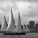 Starboard by Riggzy