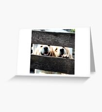 """Goofy Lovely Duo- 09"""" Greeting Card"""