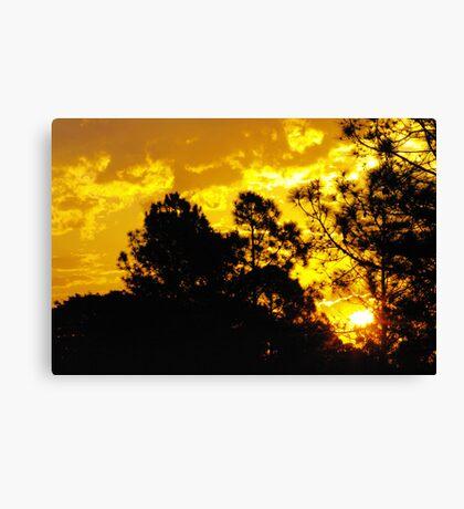 Suburban sunset Canvas Print