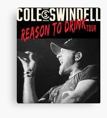 erno Swindell Reason Cole to Drink Tour 2018 Canvas Print
