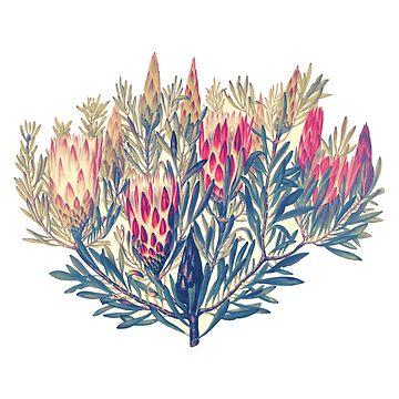 Roter Honig-Blumen-Aquarell exotische botanische Boho tropische Art Plants von Saburkitty