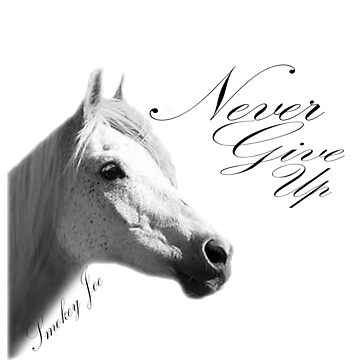 "Smokey Joe ""Never Give Up"" by WFP87"