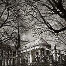 Notre Dame by Kostas Pavlis