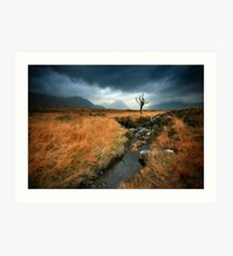 Scotland : Rannoch Moor Art Print