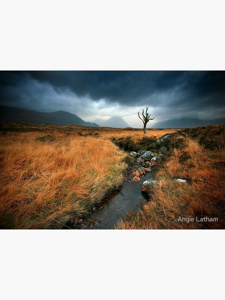 Scotland : Rannoch Moor by AngelaBarnett