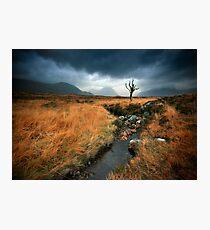 Scotland : Rannoch Moor Photographic Print