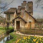 The Mill & a Daffodil or two or ... by Michael Matthews