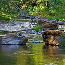 Jackson Creek by Bryan D. Spellman