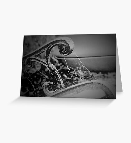 Bench and Web Greeting Card