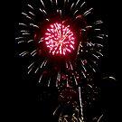 Firework Flower by bubblebat