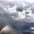 Monsoon Bow by © Loree McComb