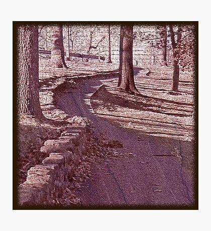 Through the Park Photographic Print