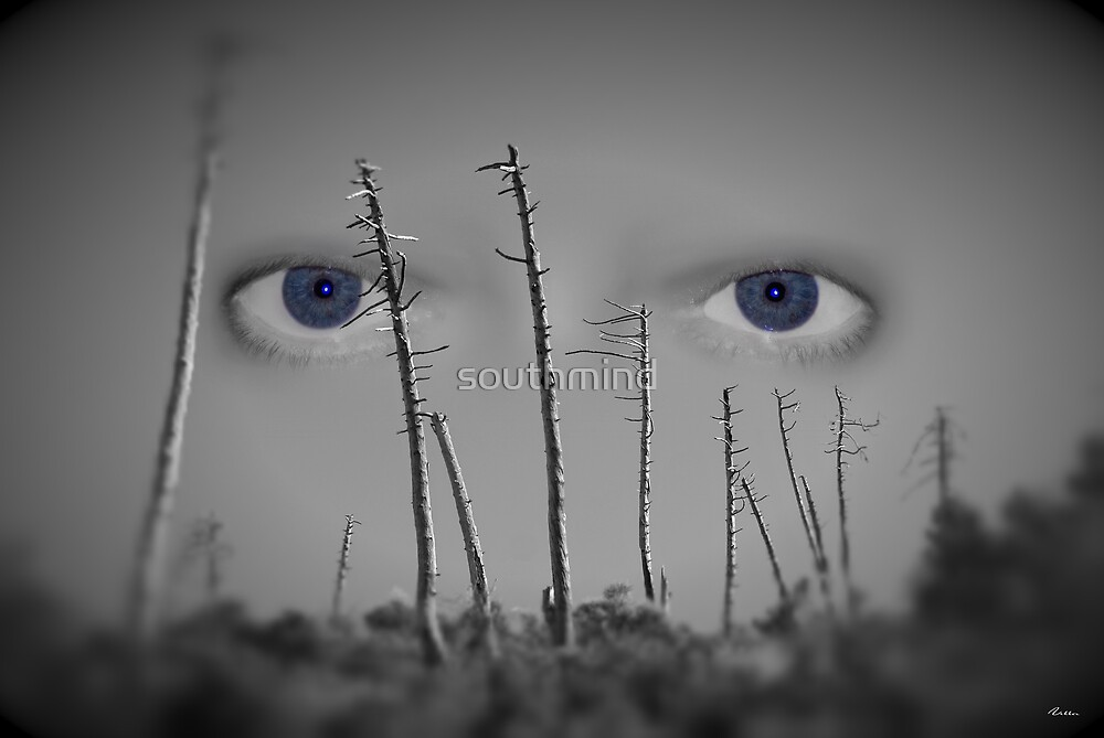 I see you... by southmind