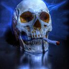 Smoking Skull by Nigel Bangert
