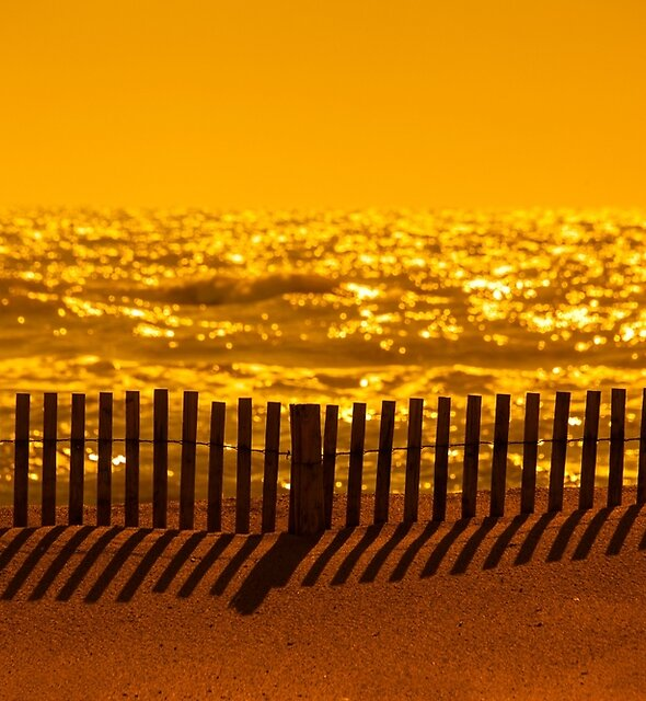 Beach Fence at sunset by Dave Hare