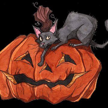 Jack O' Lantern Cat by Tally-Todd