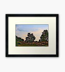 Heideweg Framed Print