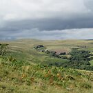 Ugborough Beacon - Across The Acres by lezvee