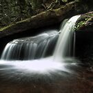 Delicate Cascade by Aaron Campbell