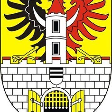 Coat of Arms of Poděbrady, Czech Republic by PZAndrews