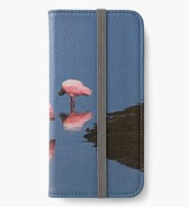 Just Give Me a Reason iPhone Wallet/Case/Skin