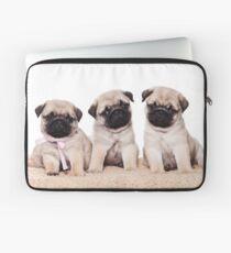 Three pug puppy Laptop Sleeve