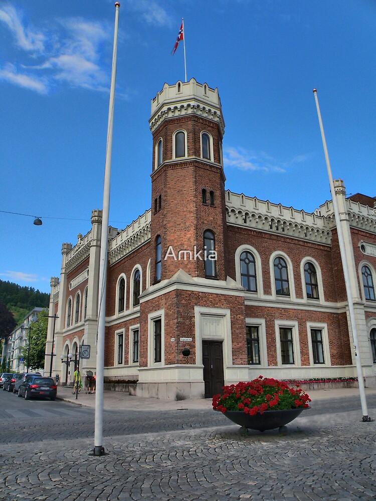 Drammen (city) 2009 by Amkia