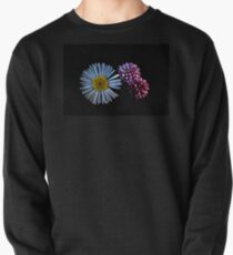 Tiny Wild Flowers On Black Pullover