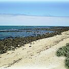 Williamstown Back Beach as rocky as ever. by EdsMum