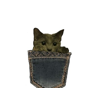 My kitty in a pocket by vwells