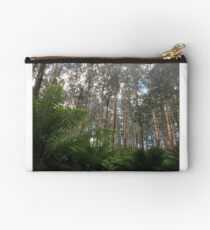 Where the Mountain Ash meets the ferns - Toolangi, Victoria, Australia Studio Pouch