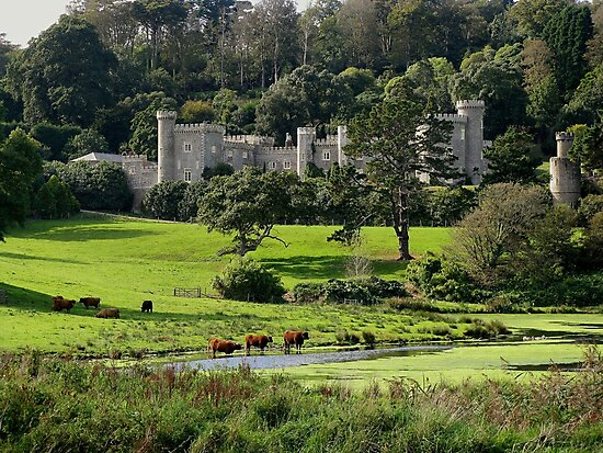 Caerhays & Constable by Mike Honour