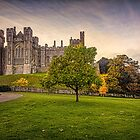 ARUNDEL CASTLE AND GARDENS by Peter Sutton