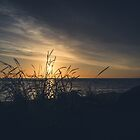 The Sun Between by Gben