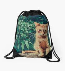 Tabby cat Drawstring Bag
