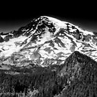 Mount Rainier in Black & White by John  Kapusta