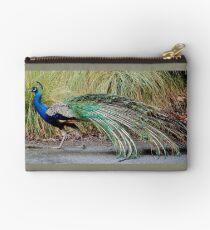 Strutting Peacock Studio Pouch