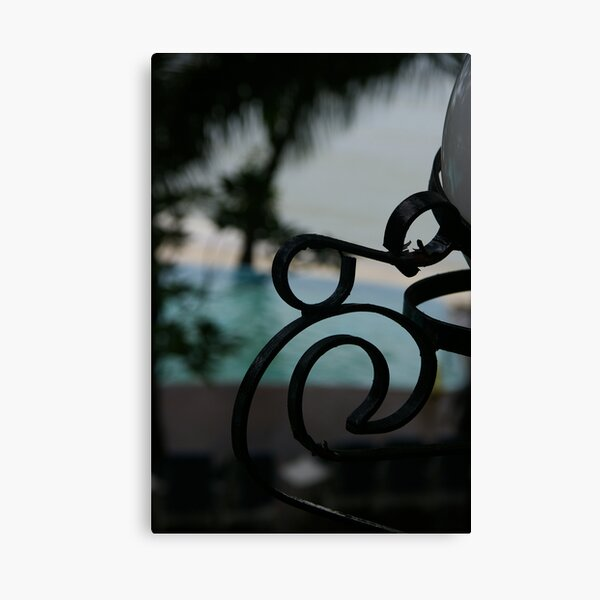 What's A Nice Curl Like You Doin' In A Place Like This? Canvas Print