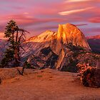 Half Dome from Glacier Point by Joshua Snyder