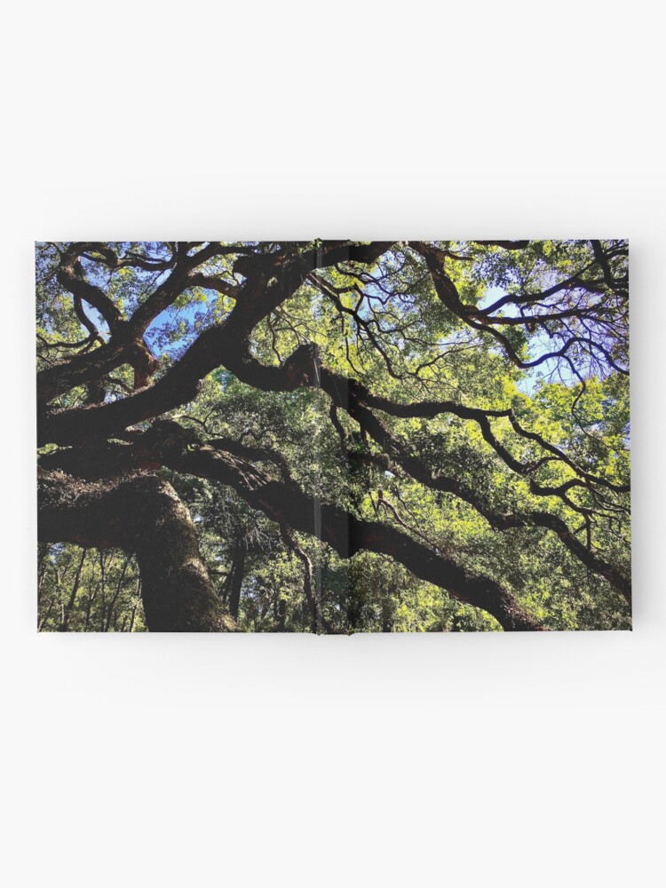 Alternate view of Angel Oak Arms Hardcover Journal