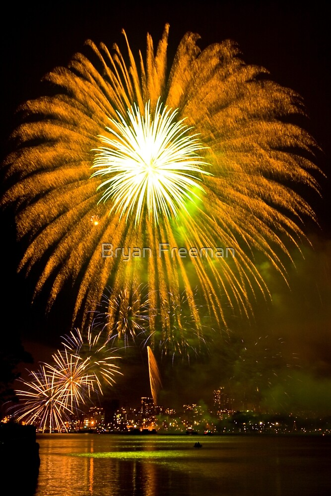 Single Sunflower Supernova - Sydney Harbour - New Years Eve - Midnight Fireworks  by Bryan Freeman