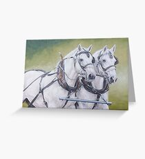 Percheron pair Greeting Card