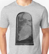 Mesha Stele Unisex T-Shirt