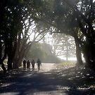 Rottnest Island 5 by Jack Bridges