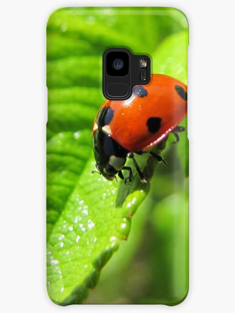 Ladybug walked on the leaf like never before by PVagberg