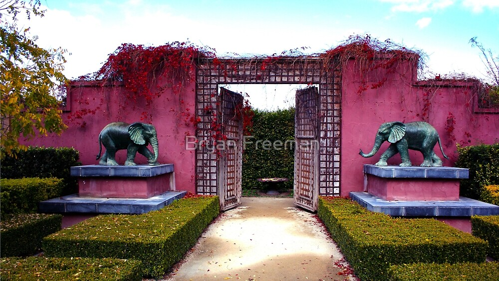 Red Wall Of Elephants Duo by Bryan Freeman