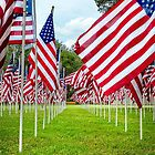 Flags of Valor by Kay Brewer